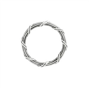 Signature Romance Band Ring in sterling silver 2 mm